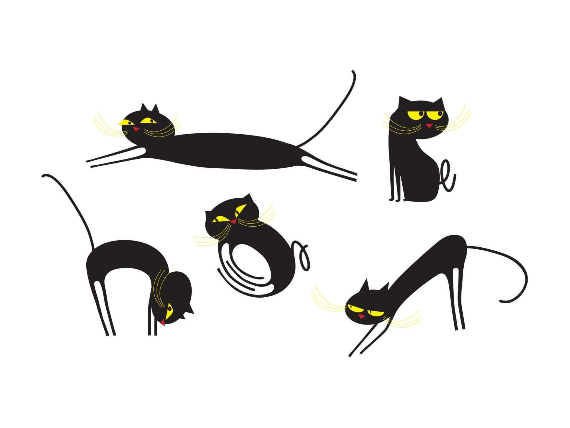 set de 5 chats à la personnalité de votre choix : joueur, méchant, sympa, inquiet.