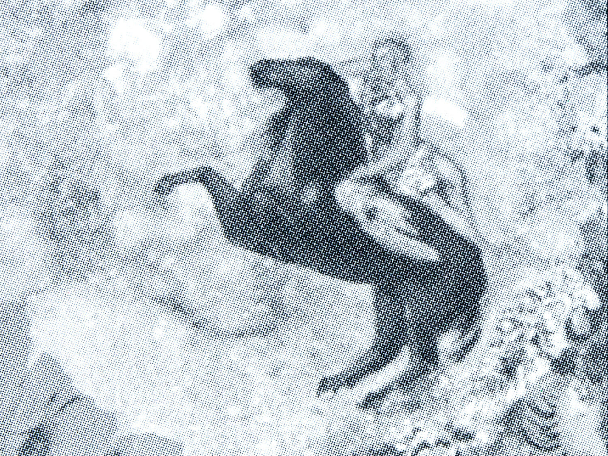 Zoom de la couverture de du roman La retraite de Mr Bougran de Joris-Karl Huysmans
